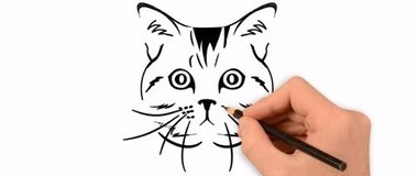 How to draw a cat, draw a cat portrait, #YouTubeKids, #Cat